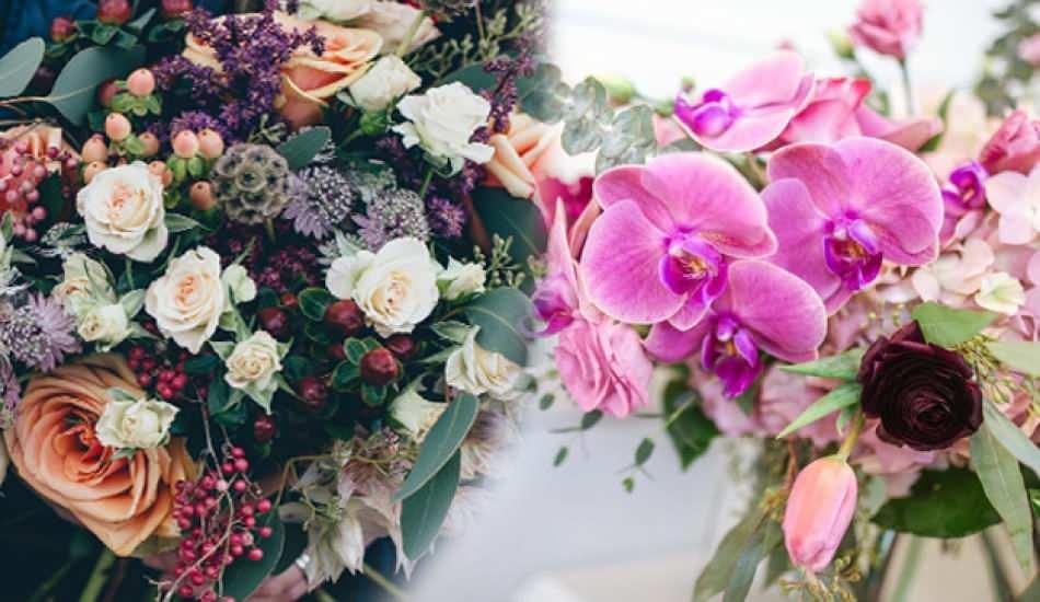 Dünyanın en güzel çiçekleri belli oldu! İşte en güzel çiçekler...