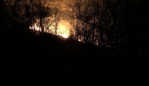 Manisa'daki orman yangınında 1 hektarlık alan zarar gördü
