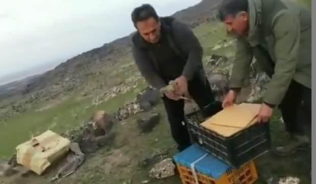 'Canlı mühre' ile keklik avına dudak uçuklatan ceza