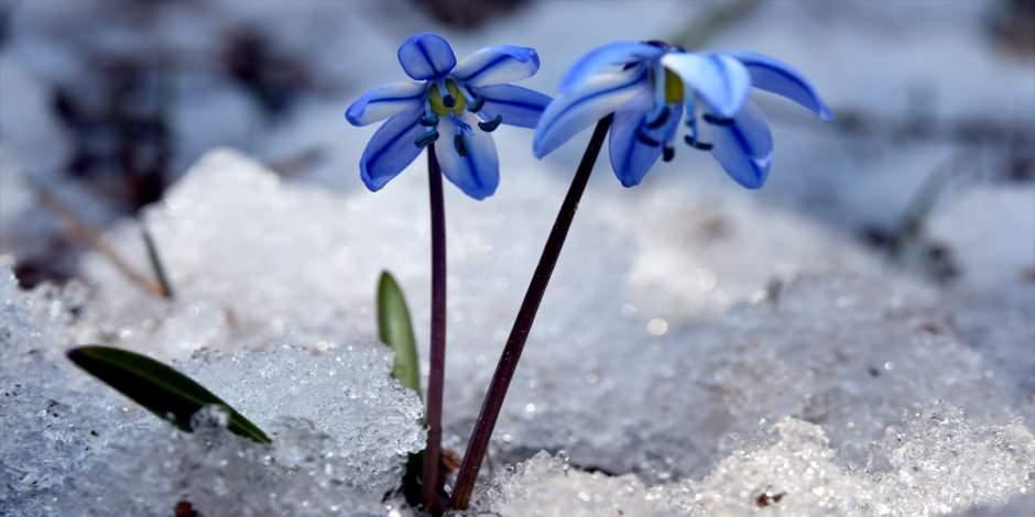 Kış turizminin gözdesi Kars baharda da göz kamaştırıyor