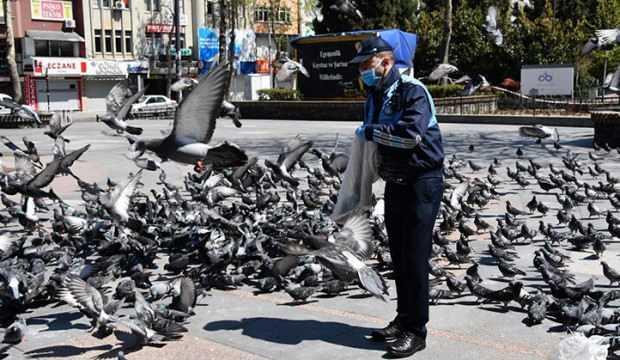 Güvercinleri zabıta besledi!