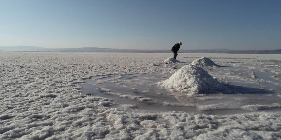 """Tuzla Gölü """"Hassas Alan"""" ilan edildi"""