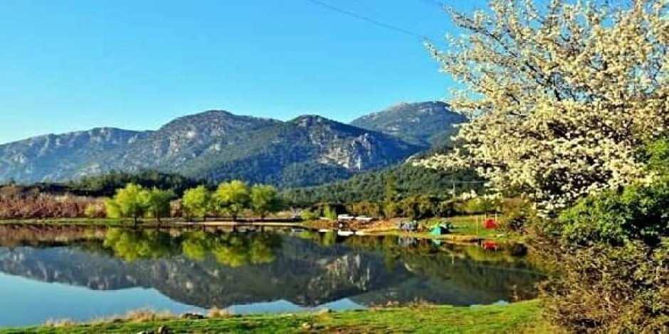 Spil Dağı'nda yılkı atları eşliğinde bahar güzelliği