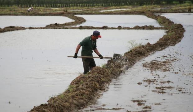 Bursa'da çiftçilerin zorlu mesaisi başladı