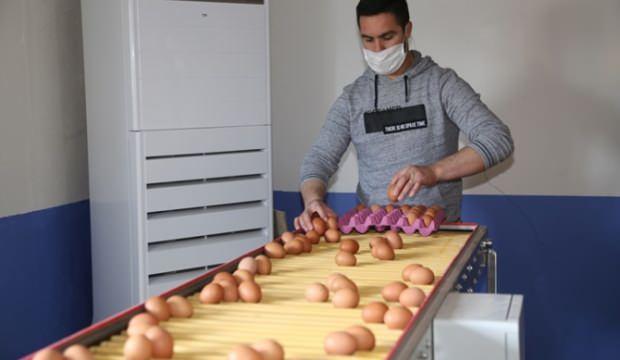 Yumurta üreticileri talebe yetişemiyor