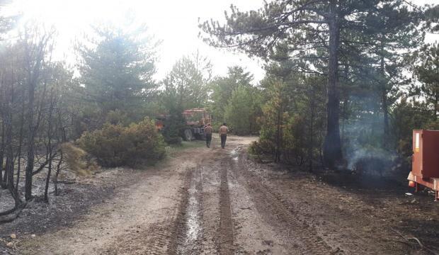 Kütahya'da 50 hektarlık ormanlık alan kül oldu