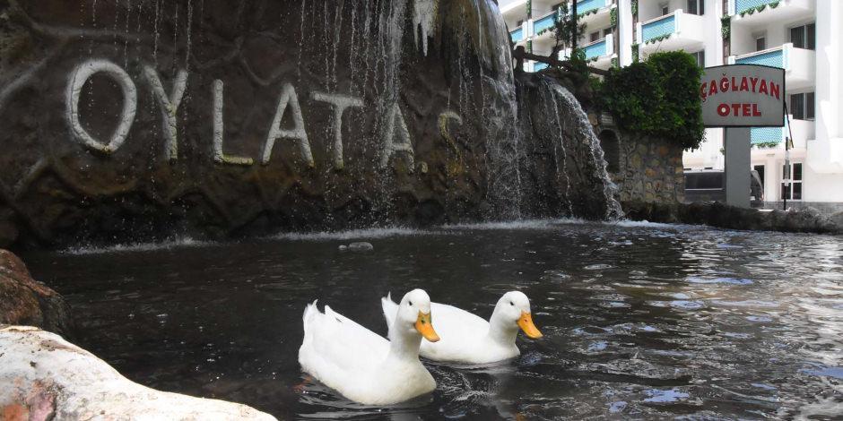 Bursa Oylat Kaplıcaları açıldı