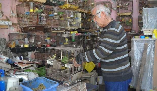 Emekli öğretmenin 'kuş' tutkusu görenleri hayrete düşürüyor