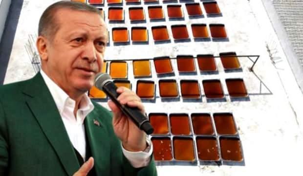 Cumhurbaşkanı Erdoğan'ın her sabah 1 kaşık içtiği dut pekmezinin sırrı ortaya çıktı
