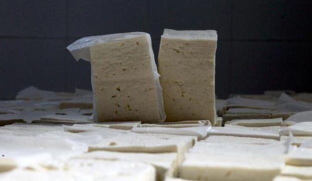 Peynir ve sütle ilgili önemli uyarı! Bu hileye dikkat