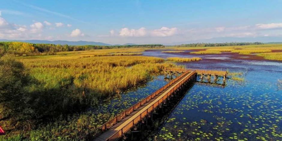 Muhteşem doğası ile Efteni Gölü yeniden ziyarete açıldı