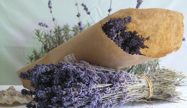 Lavanta yağının faydaları nelerdir? Lavanta yağı nasıl kullanılır?
