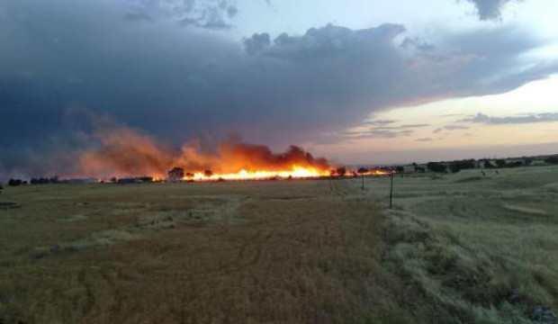 300 dönüm ekili buğday, yangında küle döndü