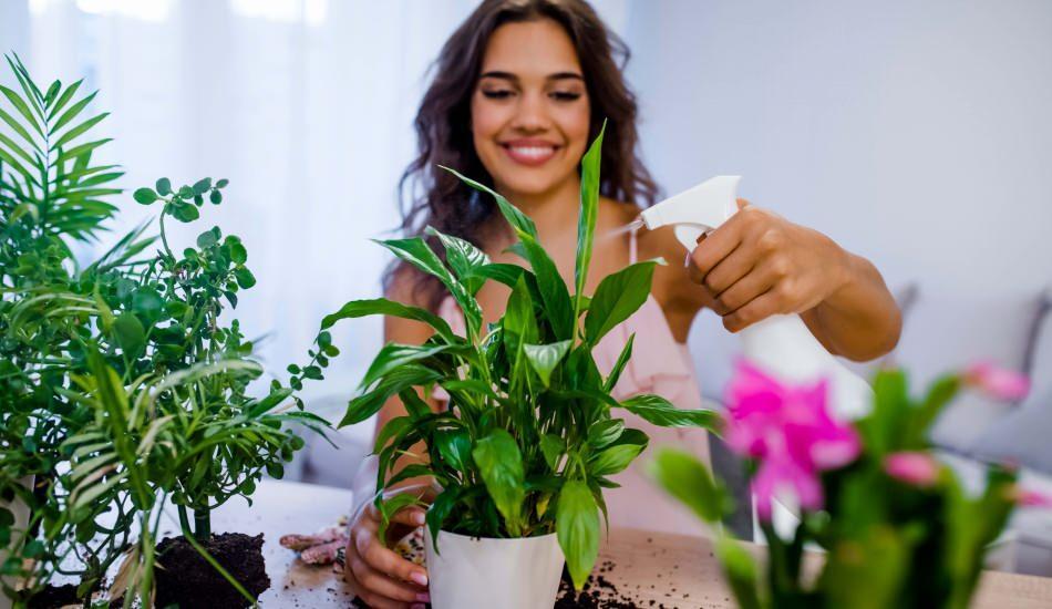 Evdeki çiçekler nasıl coşturulur?