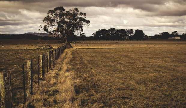 Rüyada toprak görmek hayırlı mıdır? Rüyada toprak eşelemek neye işarettir?