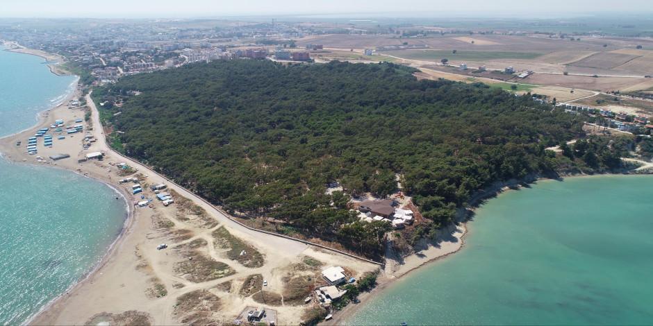 adana bungalov evleri