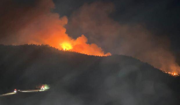 20 ildeki yangınlarda son durum! Bakan Pakdemirli açıkladı