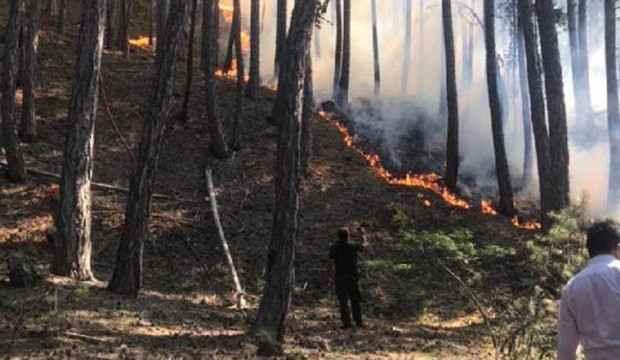 Ankara'da milli parkta yangın