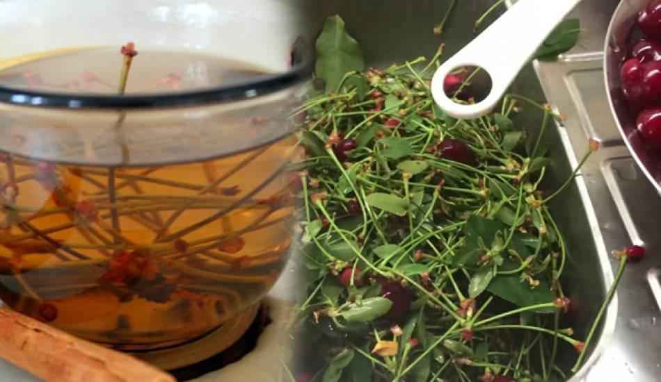 Vişnenin faydaları nelerdir? Vişne suyu ve vişne sapı çayının bilinmeyenleri...
