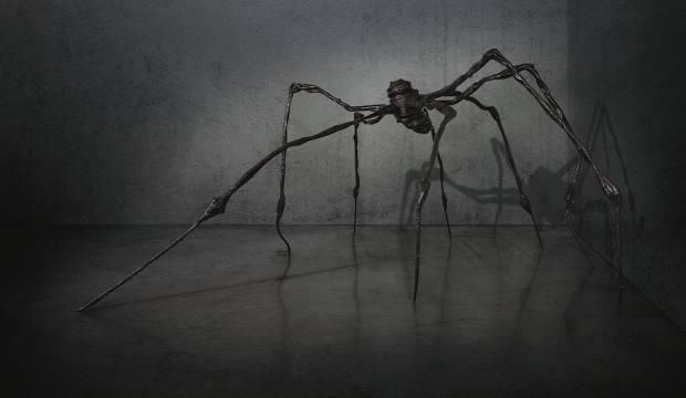 Rüyada örümcek sürüsü görmek ne demek? Rüyada örümcek ısırması...