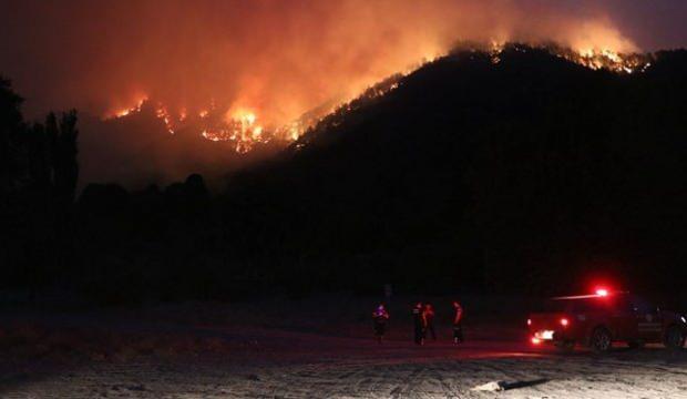 Adana'da orman yangını: Bazı evler tahliye edildi - GÜNCEL Haberleri