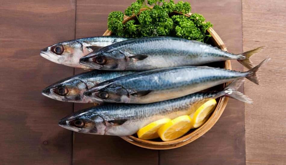 Uskumru balığının faydaları nelerdir? Kansızlığı engelleyen mucize besin uskumru balığı
