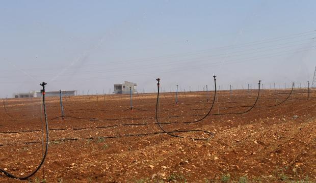 Reyhanlı Barajı, Amik Ovası'ndaki tarım arazilerine bereket katacak