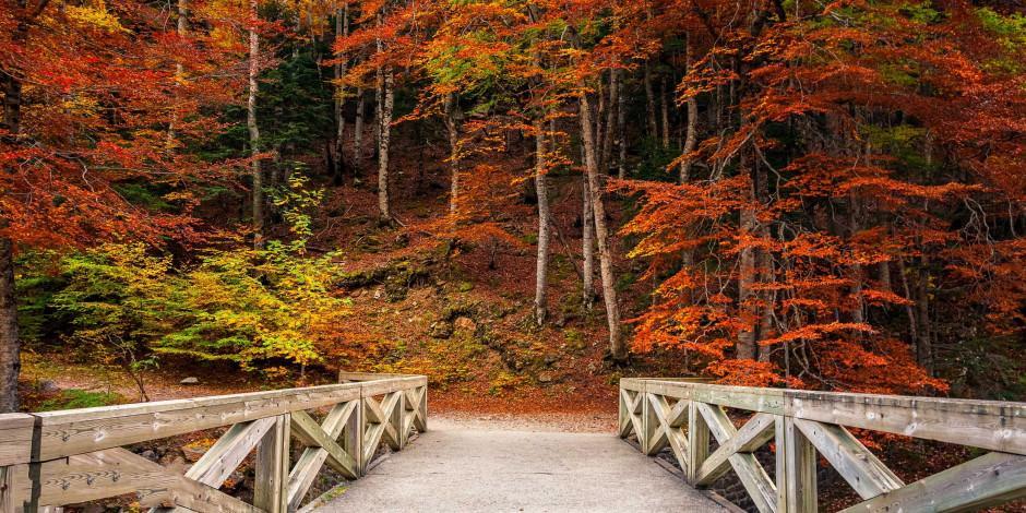 Türkiye'nin az bilinen sonbahar rotaları