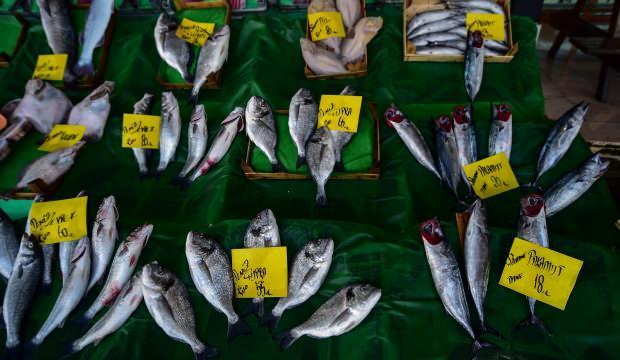 Balık fiyatı yüzde 19,8 düştü