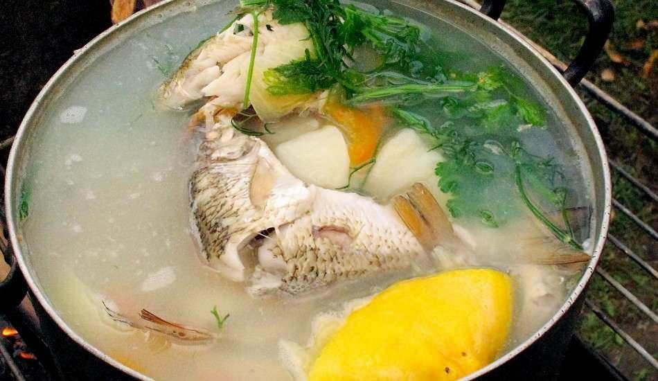 Balık kemiklerinden su nasıl yapılır? Enfes balık kemik suyu yapımı