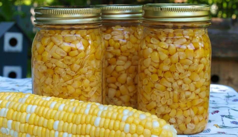Mısır nasıl saklanır? En kolay mısır saklama yöntemleri!  Kışlık mısır hazırlama
