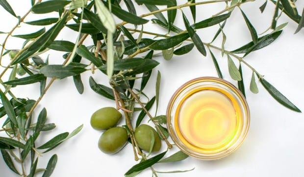 Zeytin yaprağı faydaları nelerdir? Zeytin yaprağı çayı nasıl hazırlanır?