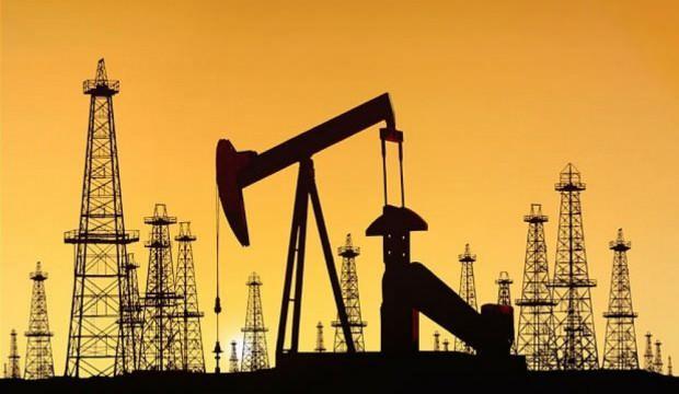 10 petrol ve doğal gaz sahası elektronik ortamda satışa çıkarılacak