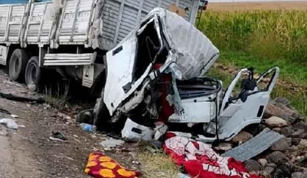 Viranşehir'de iki kamyon çarpıştı: 2 ölü, 2 yaralı