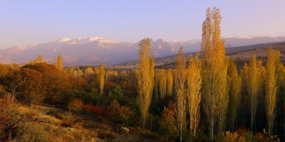 Hazan renkleriyle birleşen karlı dağlardan büyüleyici manzaralar