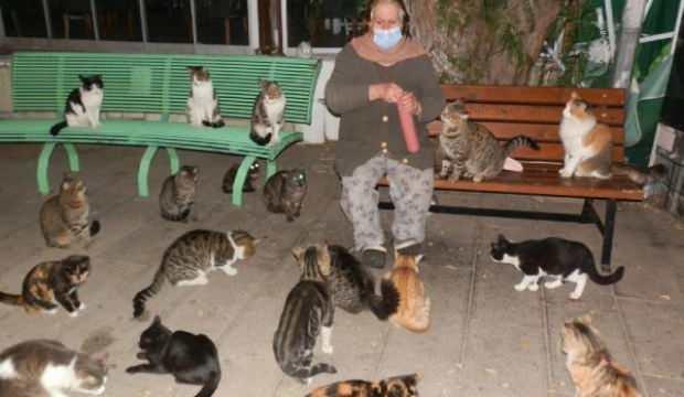 Kısıtlamada mahalle mahalle gezip, sokak hayvanlarını besliyor