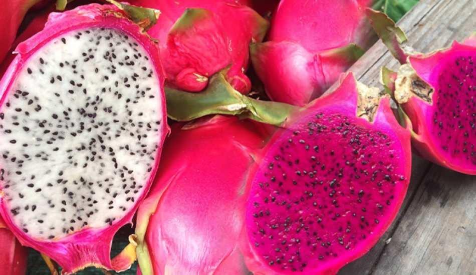 Ejder meyvesi nedir? Ejder meyvesinin faydaları nelerdir? Vücudun enerjisini yükseltiyor...
