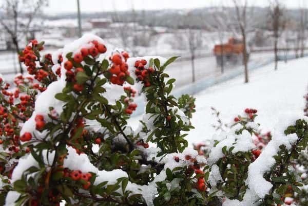 Son dakika: Eskişehir'e ilk kar yağdı, yüksek kesimler beyaza büründü