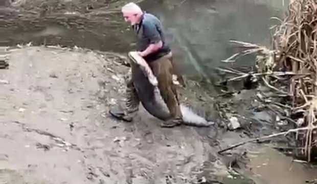 Irmakta boyu kadar balığı böyle yakaladı!