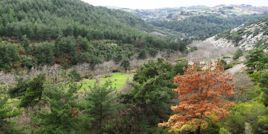 Lapseki doğası ve kaplıcalarıyla turistlerin yeni gözdesi olacak!