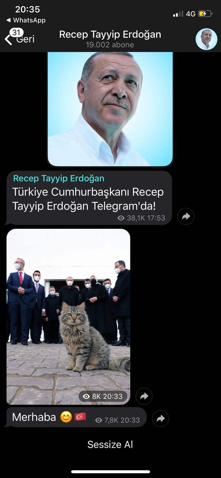 Başkan Erdoğan'ın Telegram paylaşımı