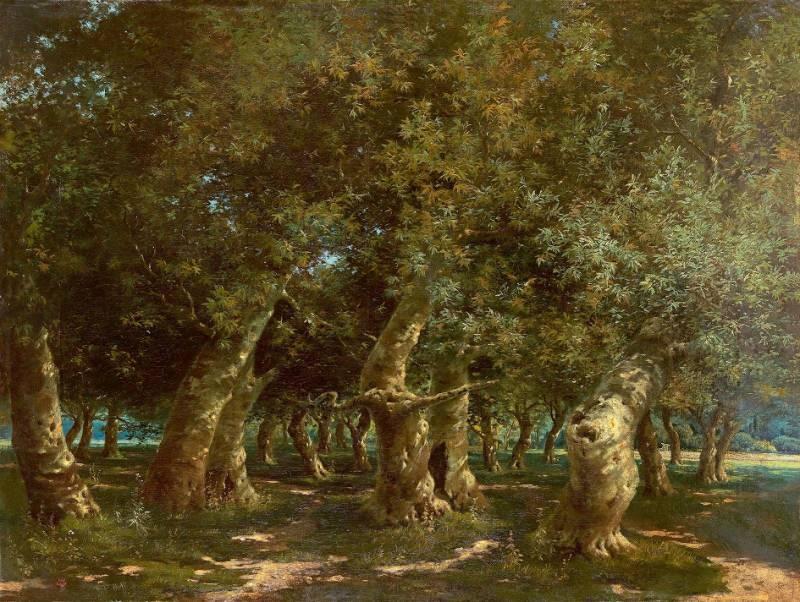 HOCA ALİ RIZA (1858-1930) Orman