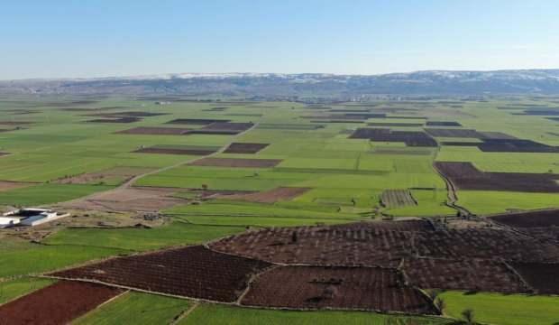 6 ilde arazi toplulaştırılmasına karar verildi
