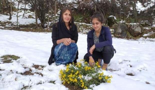 Derecik'teki bahar havası yerine kara bıraktı, çiçekler kar altında kaldı