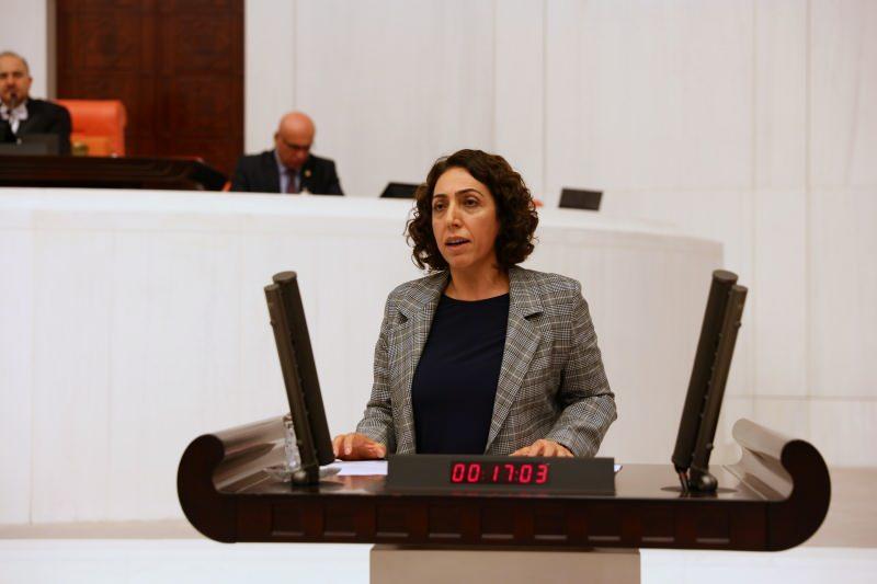 DBP Eş Genel Başkanı ve Diyarbakır Milletvekili Salihe Aydeniz