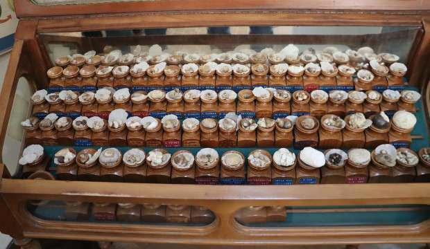 Hataylı üroloji uzmanının şaşırtan koleksiyonu! 46 yıldır 2 bin ameliyattan elde ettiği...