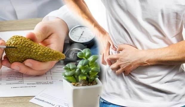 Mide ağrısıyla kendini gösteren pankreas kanserine dikkat!