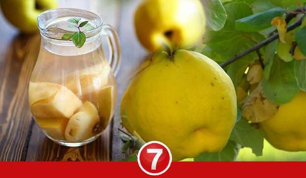 Ayva yaprağı çayının faydaları nelerdir? Ayva yaprağının cilde faydaları...