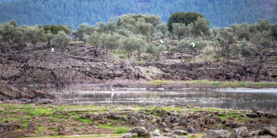 Amanos'un eteklerindeki volkanik göl göçmen kuşlarla renklendi