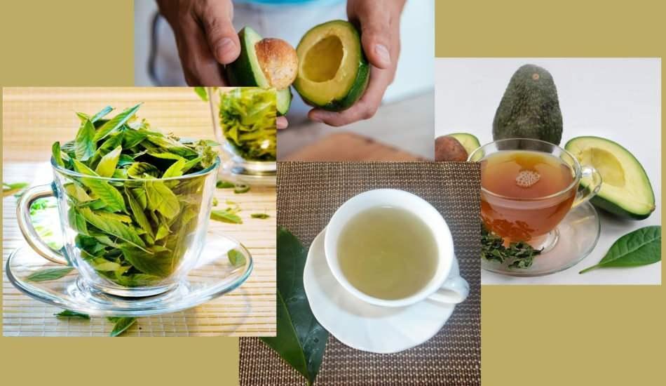Avokado yaprağı çayının faydaları nelerdir? Avokado yaprağı çayı nasıl yapılır?